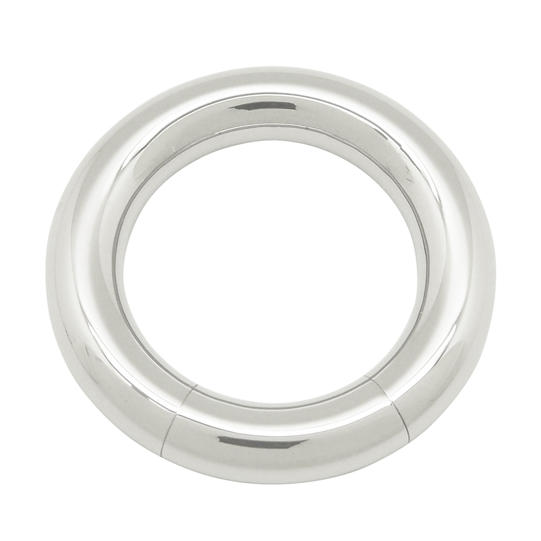 ACECHANNEL G2 Titanium Body Piercing Segment Hoop Rings (5019)