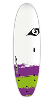 BIC Sport Paint Foam Surfboard