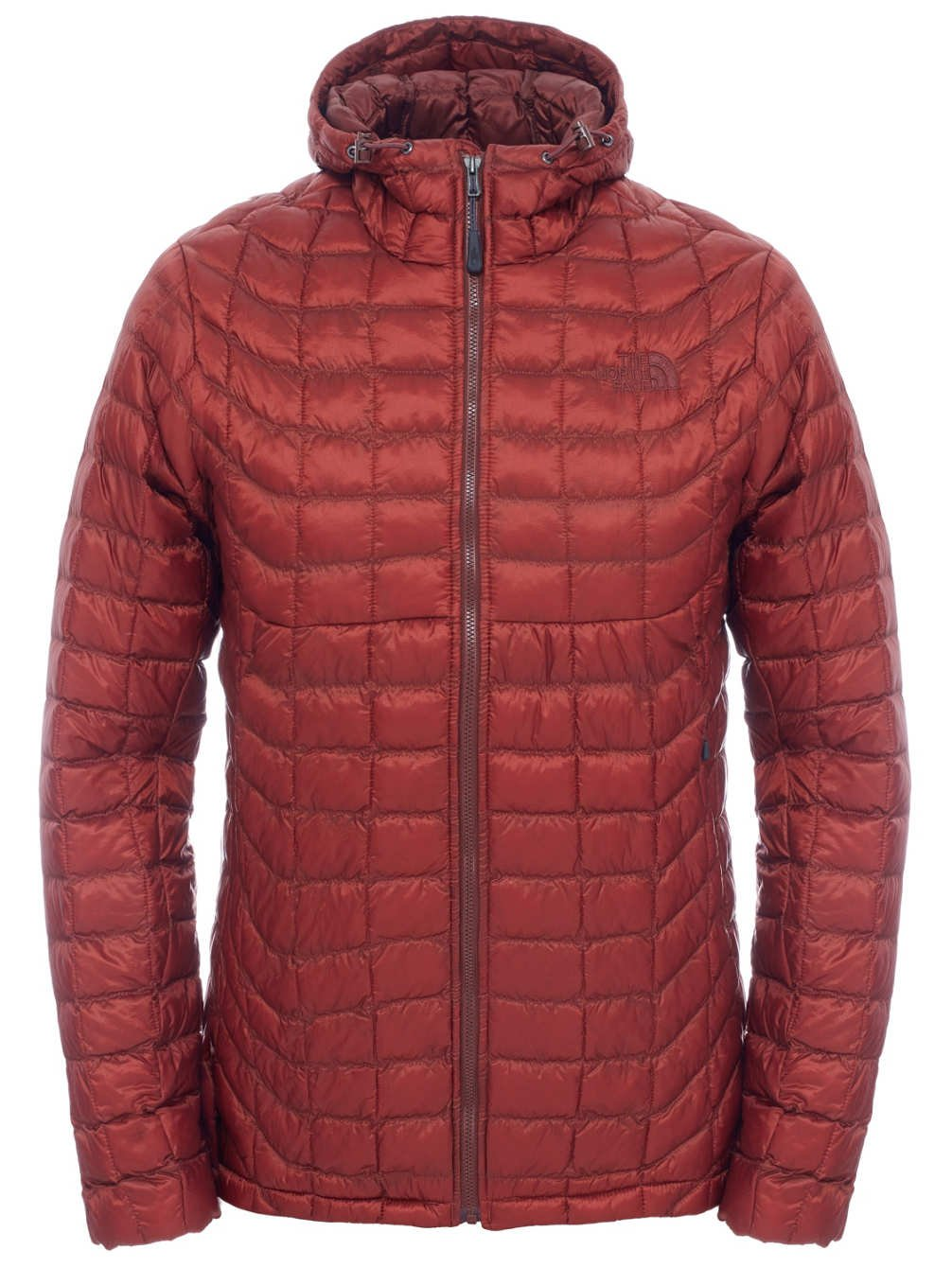The North Face?-?Men's Down Jacket Hoodie