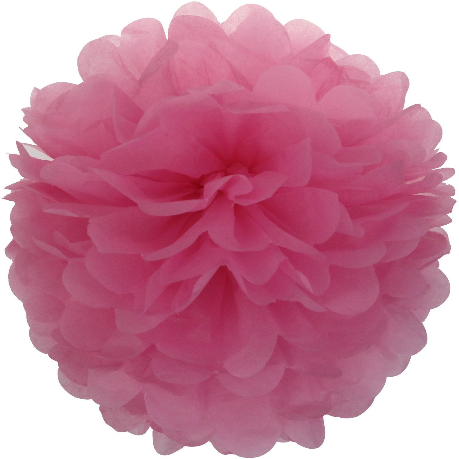 Lightingsky 10pcs Tissue Paper Pom Poms DIY Decorative Flowers Ball Perfect for Party Wedding Home Outdoor Decoration Red, 12 inch