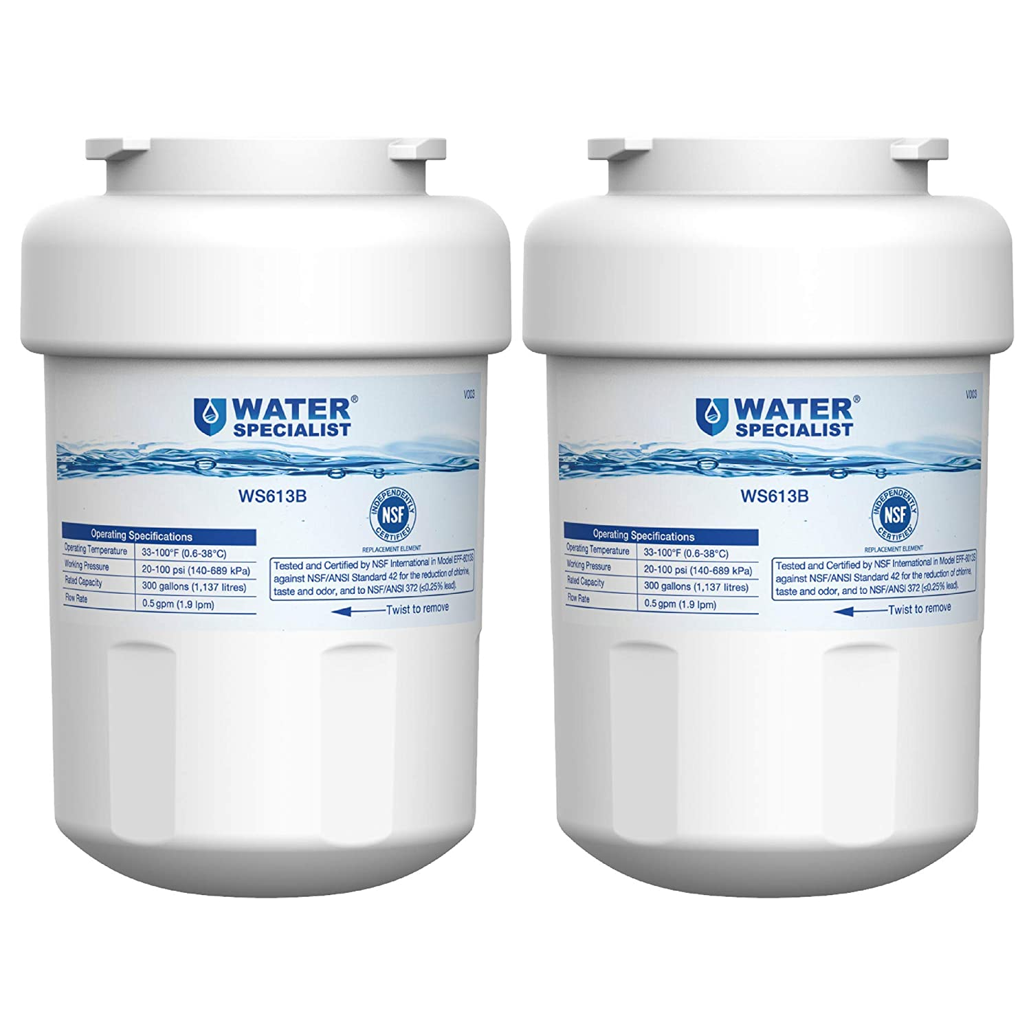 Waterspecialist MWF Refrigerator Water Filter, Replacement for GE SmartWater MWFP, MWFA, GWF, HDX FMG-1, WFC1201, GSE25GSHECSS, PC75009, RWF1060, 197D6321P006 (Pack of 2)