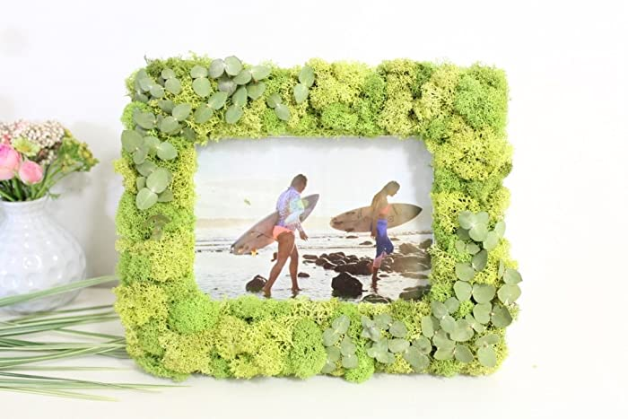 Amazon.com: Moss Picture Frame 11\