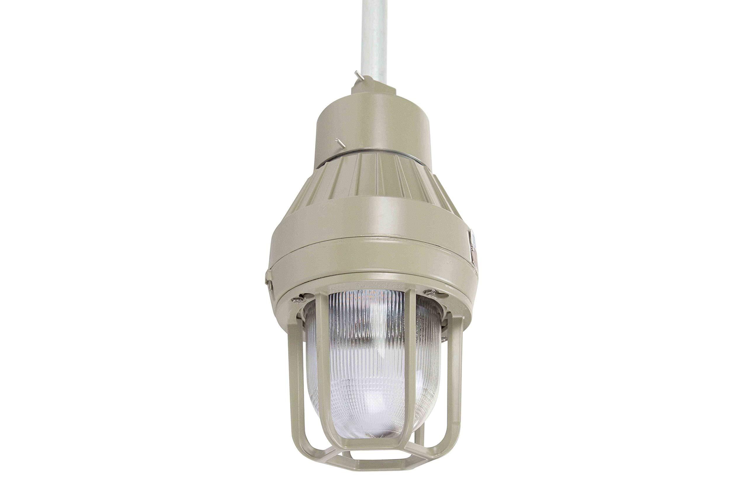 Larson Electronics 0321OXASBRA Explosion Proof LED Strobe Light - 4Hz Flash Rate - 10W - 1050 lm - Class I, Div. I - IP67 (1227VAC-Red-Pendant)