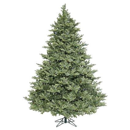 Frasier Fir Christmas Tree.Amazon Com Vickerman Idaho Frasier Fir Christmas Tree Home