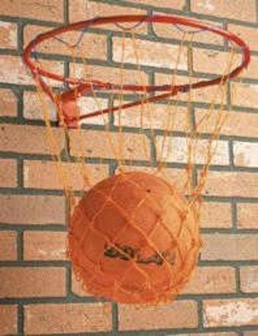 Netball Sports Accessories Indoor Playing Wall Mounted Hoop Ring & Net Set CreativeMinds UK