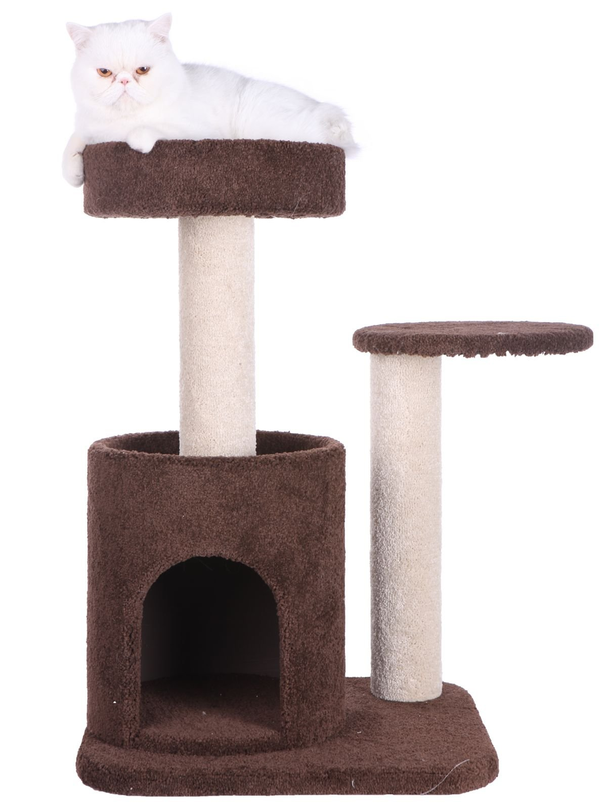 Armarkat F3005 Pet Cat Condo Scratcher with Bottom House, Coffee Brown