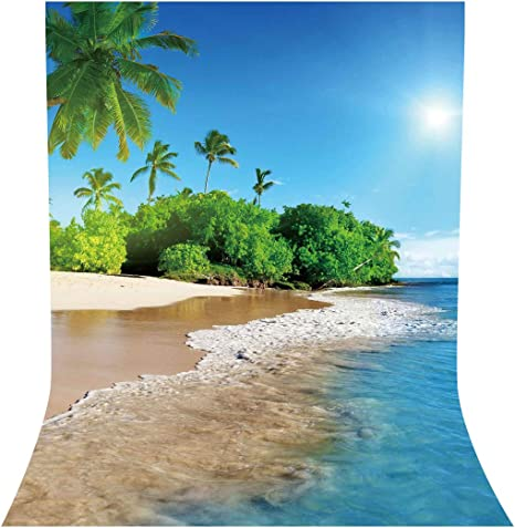 Leyiyi 12x8ft Summer Tropical Beach Backdrop Coastal Islands Stone Ocean Photography Background Kids Adults Photo Props Summer Beach Birthday Wedding Vinyl Photo Studio Props