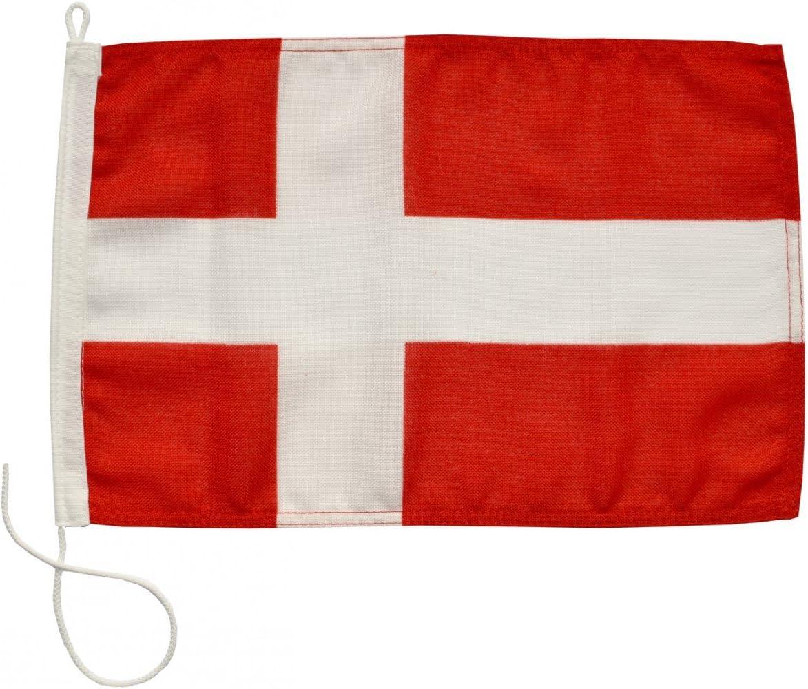 Bandera de cortesía pabellón civil Dinamarca Navyline en 4 tamaños: Amazon.es: Deportes y aire libre
