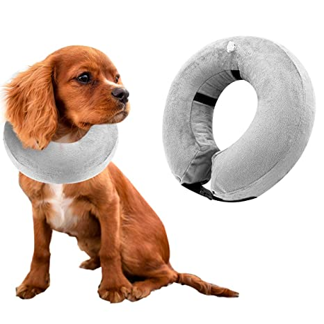 Zwini Collar Protector Inflable para Perros, Collares de ...
