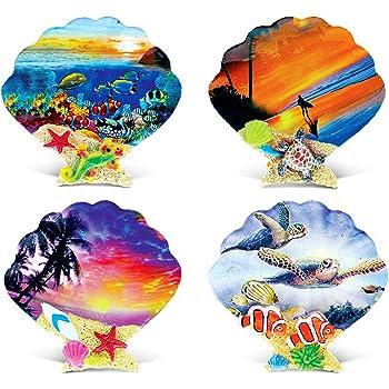 CoTa Global Colorful Tropical Shells - 3D Designs - Summer Magnet (4pc Set) - Item #7573