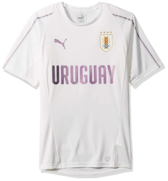 685c0807 PUMA Men's Uruguay Training Jersey: Amazon.ca: Clothing & Accessories