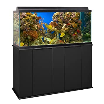 Aquatic Fundamentos 75/90 L Vertical Soporte de acuario: Amazon.es: Productos para mascotas