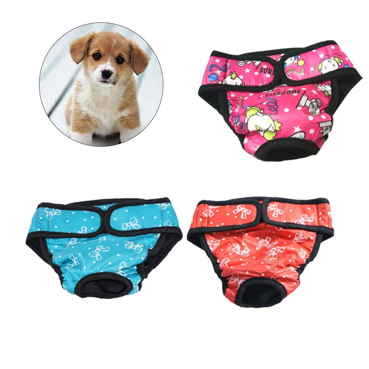 UEETEK Pañales para Perro Sanitarios Fisiológicas Bragas Lavable Pantalones de pañales para Perro Mascotas - 3 Piezas: Amazon.es: Productos para mascotas