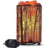 "Himalayan Salt Lamp, Salt Rock Lamp Natural Night Light in Forest Design Metal Basket with Dimmer Switch (4.1 x 6.5"" 4.4-5lbs"