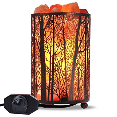 Himalayan Salt Lamp, Salt Rock Lamp Natural Night Light in Forest Design Metal Basket with Dimmer Switch (4.1 x 6.5  4.4-5lbs), 25Watt Bulbs & ETL Cord 1 Pack