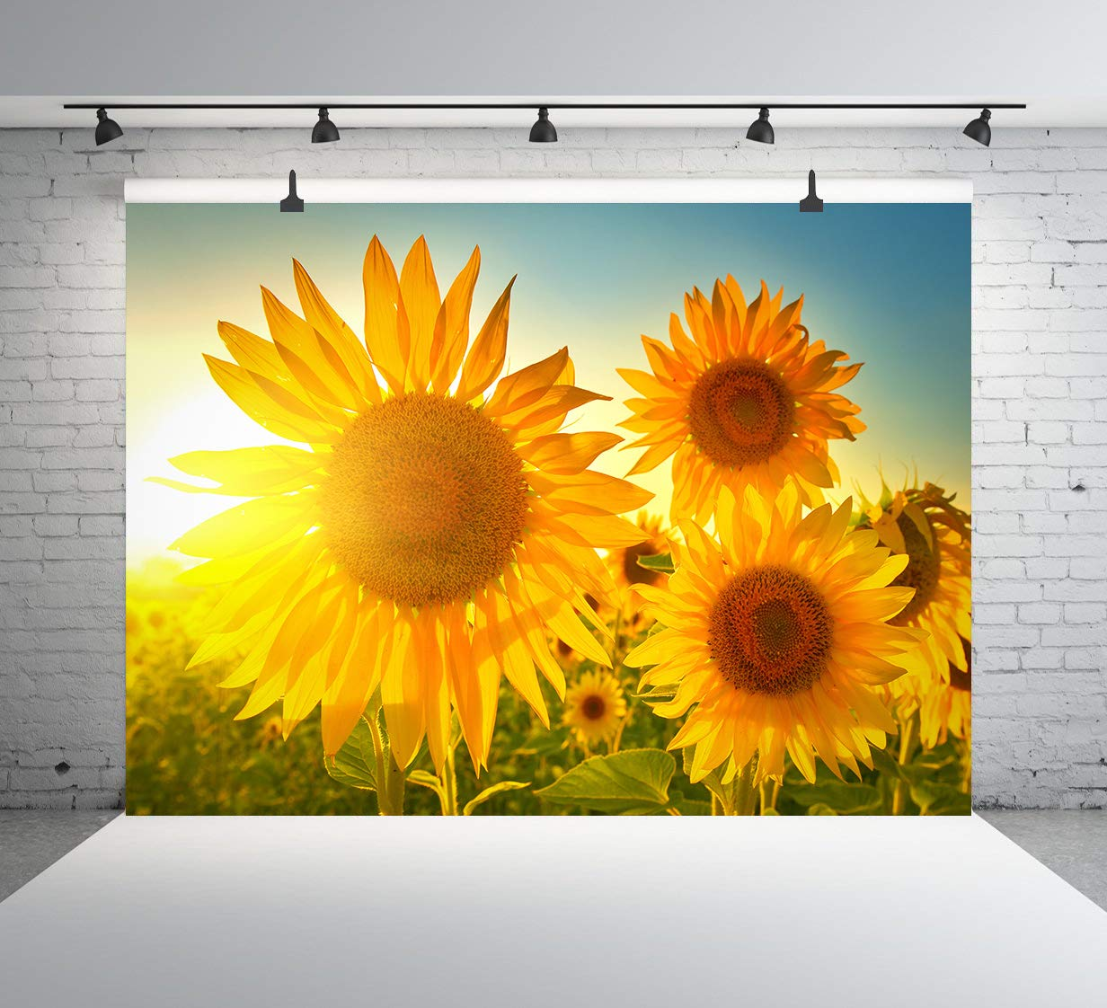 黄色いひまわり 写真背景 青い空 背景 明るい太陽の光 背景 花嫁 シャワー 背景 結婚式 パーティー 女の子 女性 写真 スタジオ 背景 ハッピーバースデーパーティー 背景 10x7フィート E00T9695   B07NW3L83N