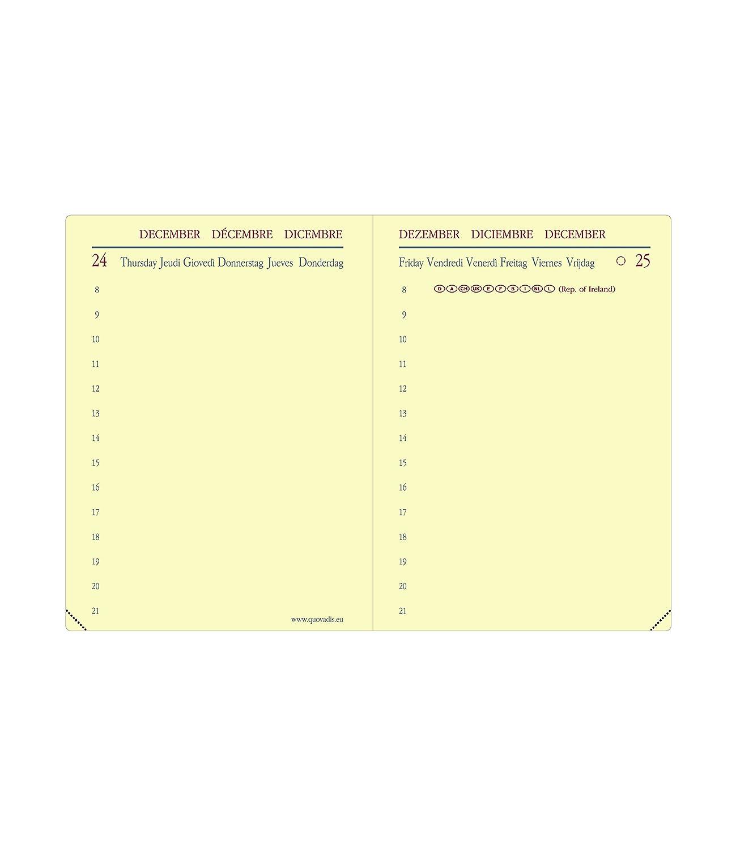 Quo Vadis 209168Q - Agenda 2020 Miniday Multilingüe Soho, Color Negro