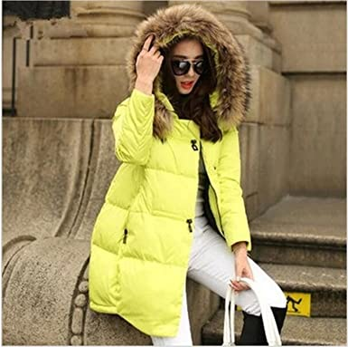 Amazon.com: Dapengzhu New Coats & Jackets Hooded Winter Jacket Women Fur Collar Winter Coat Women Zipper Parkas Female Winter Outwear Plus Size S-5XL: ...