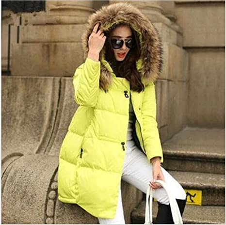 Dapengzhu New Coats & Jackets Hooded Winter Jacket Women Fur Collar Winter Coat Women Zipper Parkas Female Winter Outwear Plus Size S-5XL at Amazon Womens ...