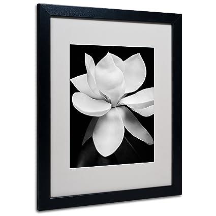 Amazon.com: Magnolia Canvas Wall Art by Michael Harrison with Black ...
