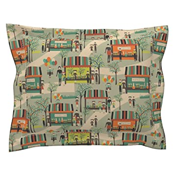Amazon Roostery Science Euro Flanged Pillow Sham Science Fair Impressive Fairon Decorative Throw Pillow
