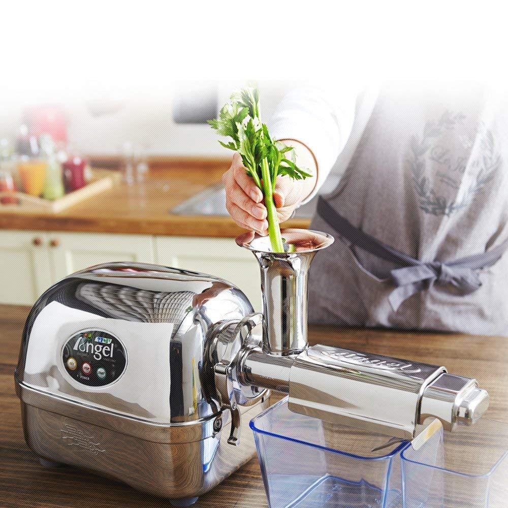 Calidad profesional. Exprimidor de jugo de frutas y verduras horizontal Angel 100//% de acero inoxidable con 3 niveles de extracci/ón y una potencia de 3 caballos