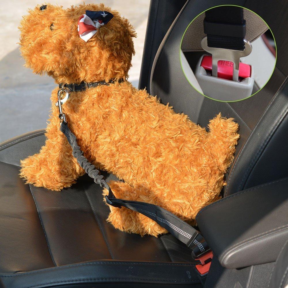 Doppelhaustier-Sicherheitsgurt Verstellbarer mit elastischem Bungee und reflektierendem Streifen Keine Verwicklung Sicherheitsgurt-Splitter im Fahrzeug SlowTon Double Dog Sicherheitsgurt