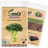 CERTIFIED ORGANIC SEEDS (Apr. 225) - De Cicco Broccoli Seeds - Heirloom Broccoli Sprouting Seeds - Non GMO, Non Hybrid - USA