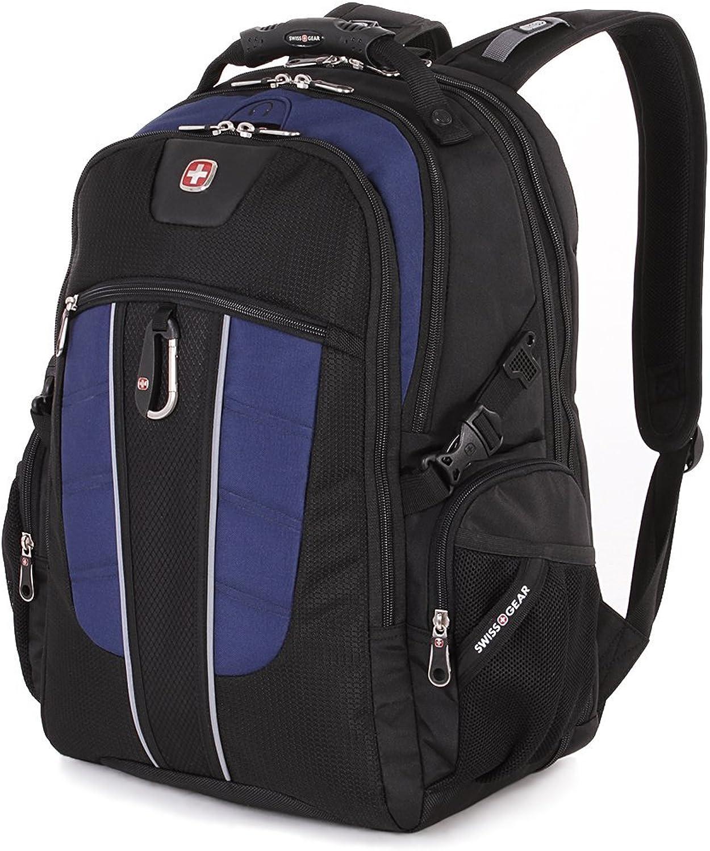 SwissGear Travel Gear 1753 Scansmart TSA Laptop Backpack - 15 Inch