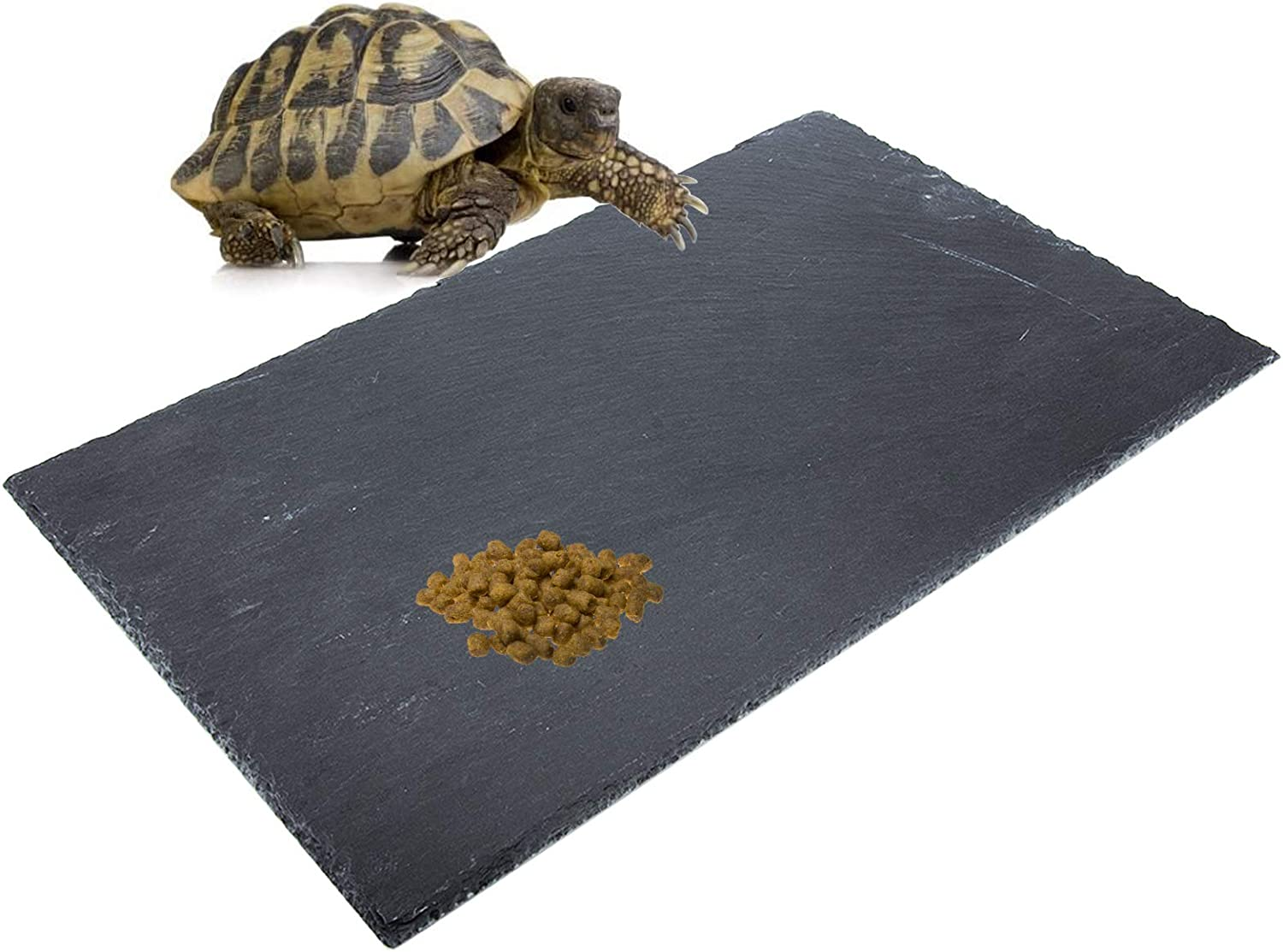 dojobkinb Reptile Basking Platform, Tortoise Feeding Food Dish, Reptile Food Dish Grinding Nail Landscape Habitat Decor for Lizard Bearded Dragon Turtle Crested Gecko Snake