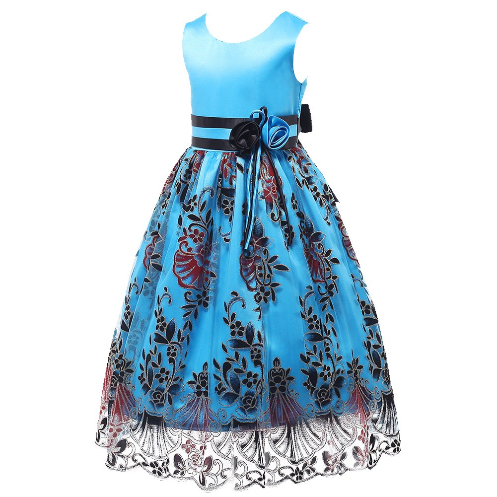 Amazon.com: Kids Toddler Litter Girls Pure Lace Princess Dress Skirt: Clothing