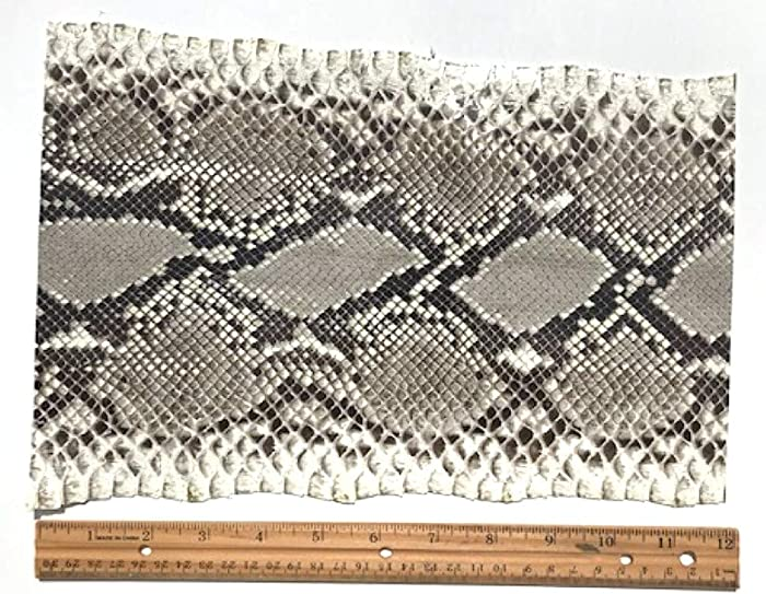 The Best Portefeiulle Home Snakeskin