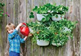 Living Wall Planter Recycled Plastic Self