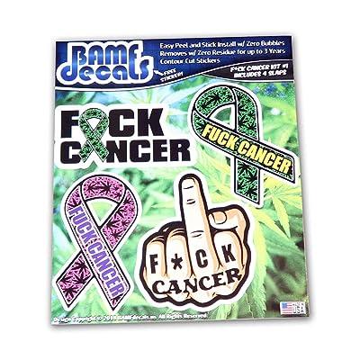 Bamfdecals FCK Cancer Ribbon Middle Finger Text Sticker Slap Pack: Automotive
