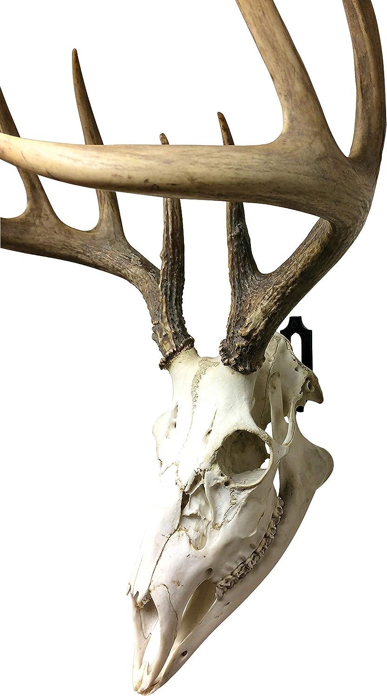 Skull Hanger Original