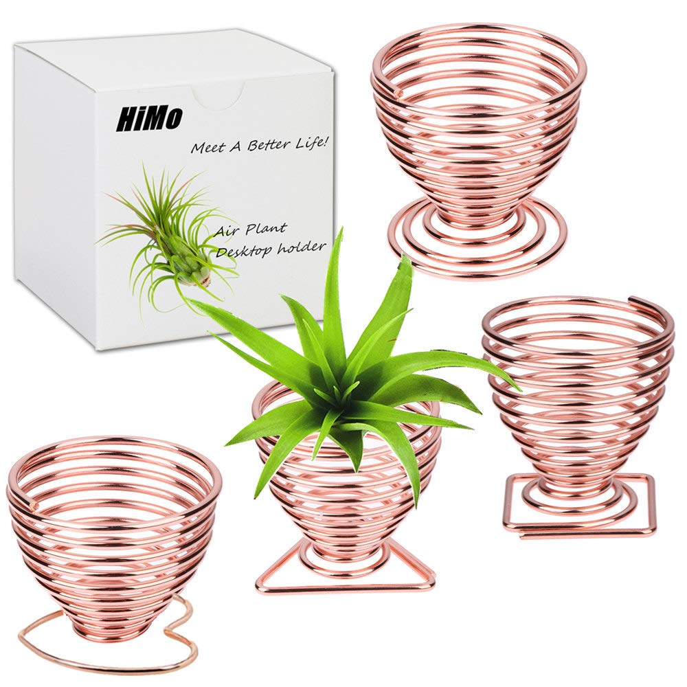 Air Plant Holder Airplant Stand Fuego Planter Lonantha Tillandsia Plant Display Racks, Live Tropical House Plants for Home Decor-Indoor Air Plants-4Pack (Rose Gold)