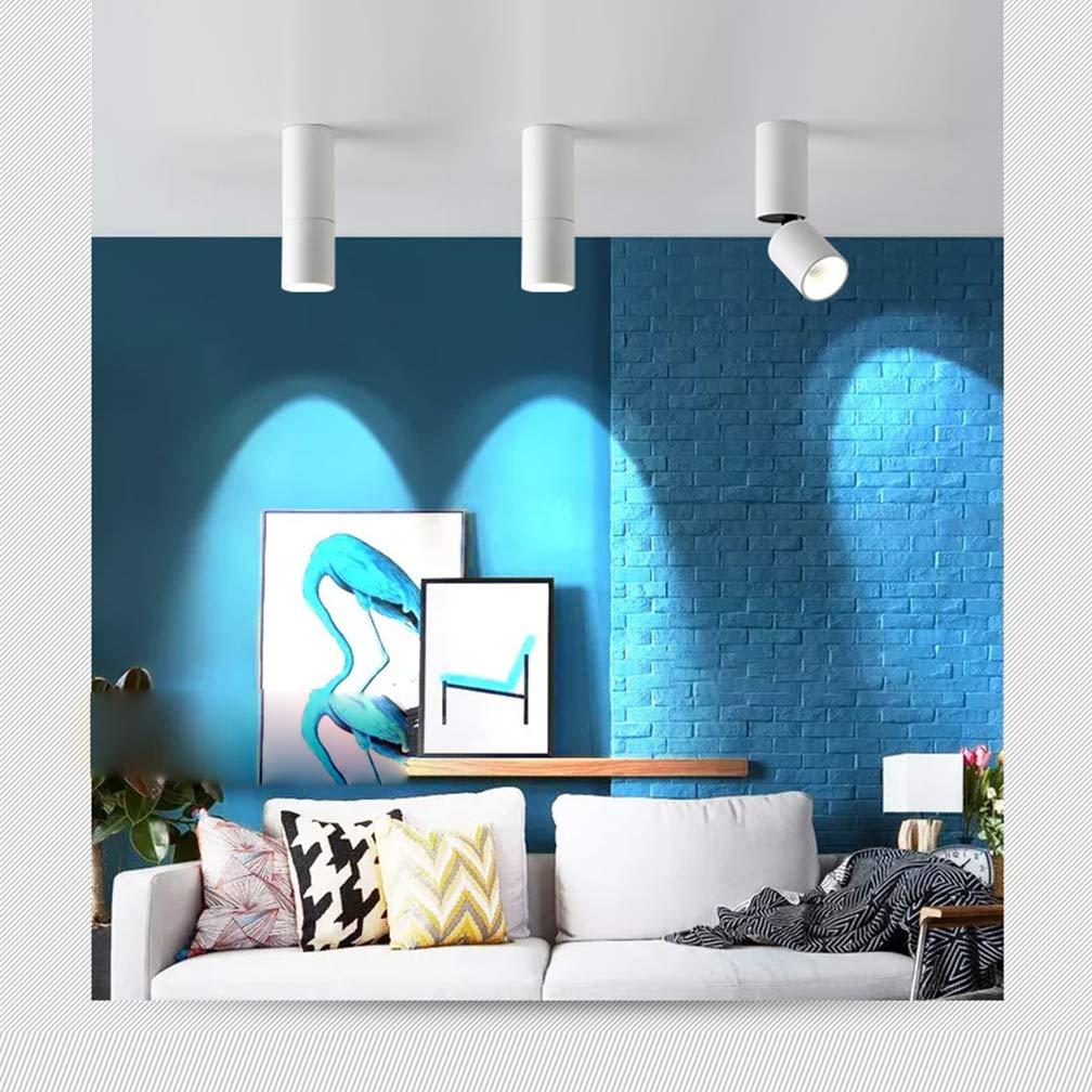 Amazon.com: Foco LED de techo moderno de 12 W, para pasillo ...