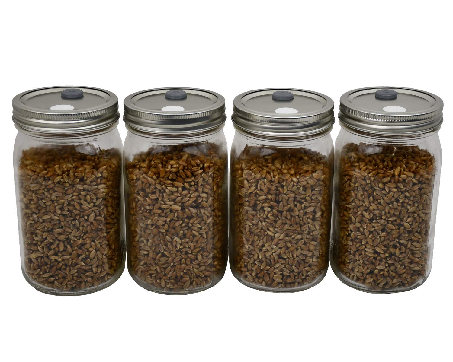 Sterilized Rye Berry Mushroom Substrate in Injectable Jars by Out-Grow by Out Grow