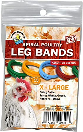 """100 RED Poultry Spiral ID Leg Bands Standard Size 11 Chicken 11//16/"""" One Color"""