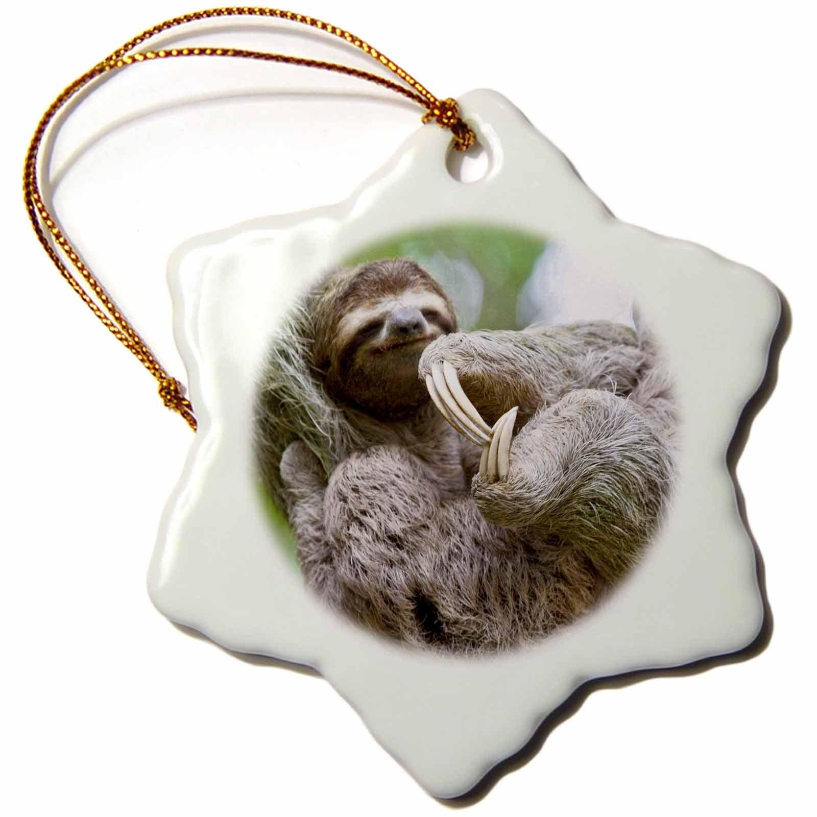 3dRose orn_87172_1 Brown-Throated Sloth Wildlife, Corcovado Costa Rica SA22 JGS0021 Jim Goldstein Snowflake Porcelain Ornament, 3-Inch