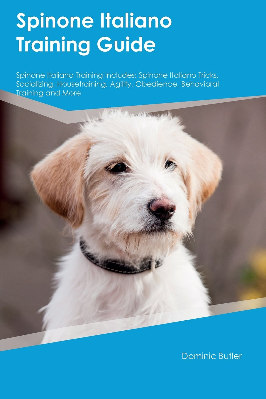 Download Spinone Italiano Training Guide Spinone Italiano Training Includes: Spinone Italiano Tricks, Socializing, Housetraining, Agility, Obedience, Behavioral Training and More PDF