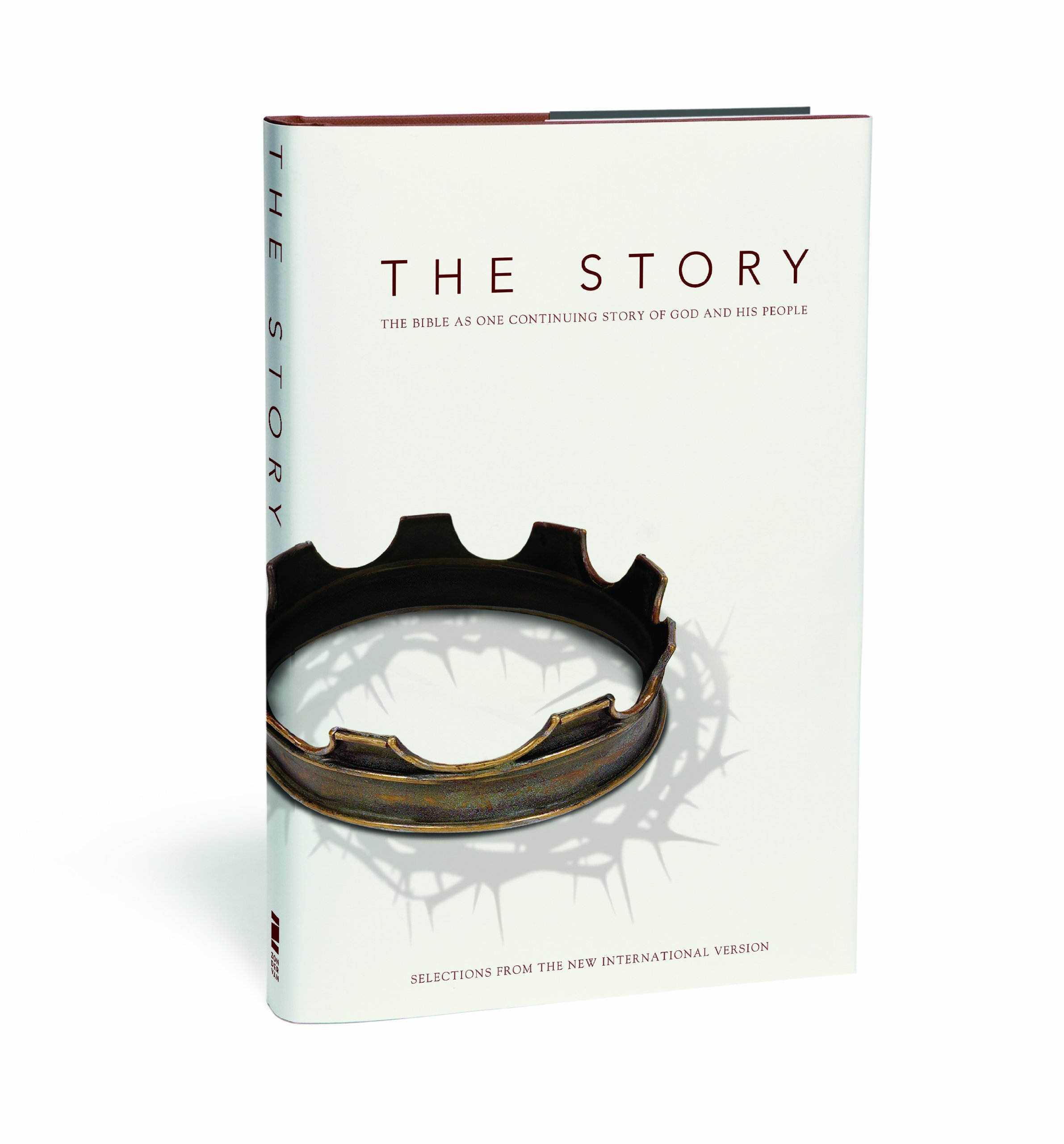 The Story: Teen Edition: The Bible as One Continuing Story of God and his People (Bible Niv)