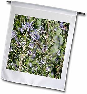 "3dRose Honey Bee On Rosemary Blossom - Bee, Flower, Insect, Rosemary - Garden Flag, 12 by 18"""