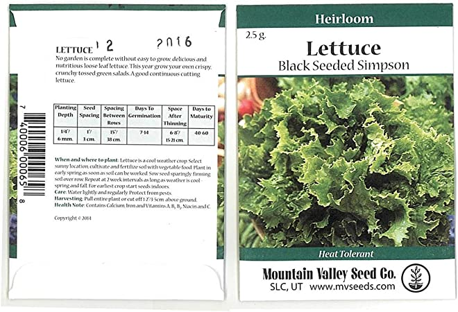 Lettuce Seeds for Planting Home Gardens 6 Grams Approx. 2,000 Seeds Black Seeded Lettuce Seeds Heirloom /& Non-GMO Planting Instructions Included