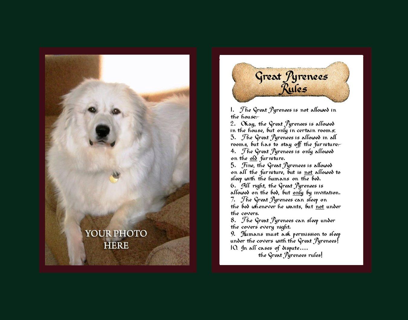 McDarlins Calligraphy Dog Rules Great Pyrenees Wall Decor Pet Dog Saying Gift 1