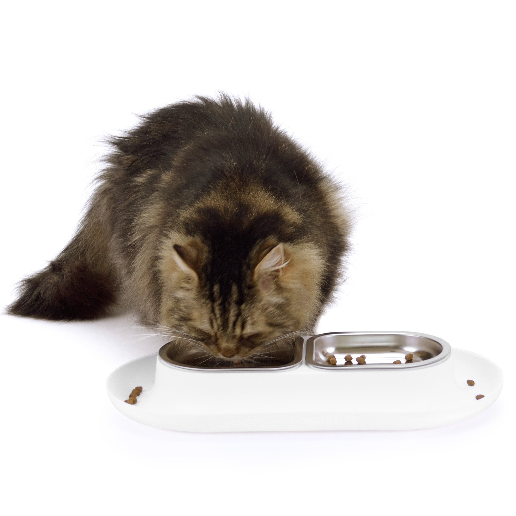 Hepper Nomnom Modern Cat and Dog Dish with Stainless Steel Bowls. Wide Tray to Keep Floors Clean and Ants Out of the Food! Color White