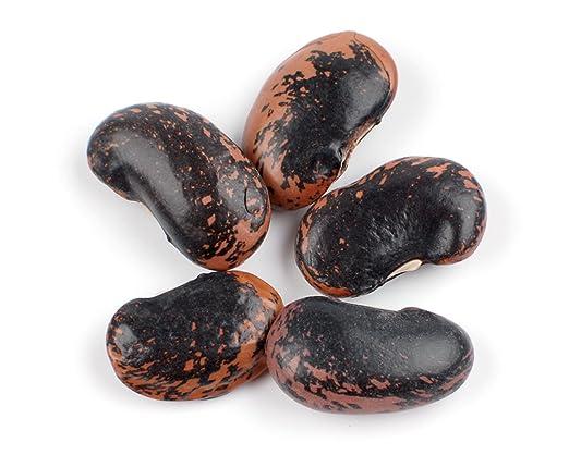 Runner Beans, Scarlet - 10 Lb Bag / Box Each