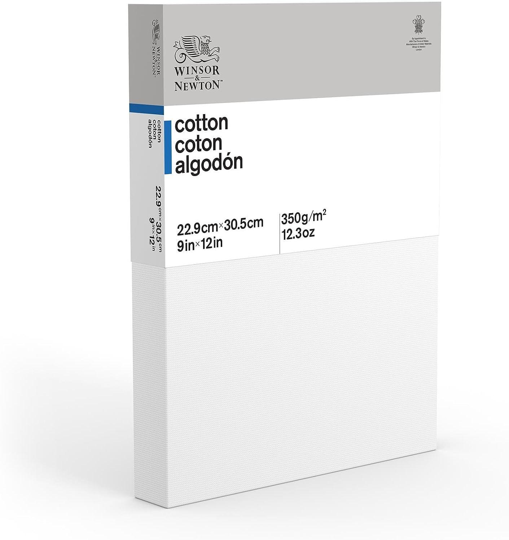8 x 24 Deep Edge Winsor /& Newton Classic Cotton Canvas