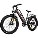 Addmotor MOTAN Electric Bicycle Step Thru Comfort Fitness Bike 26 Inch Fat Tire Full Suspension 500W Motor Mountain Electric Bike 2018 M-450 Commuter E-bike