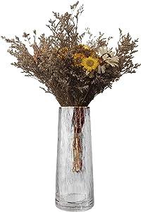 Warhm Glass Flower Vase, Clear Flower Vases with Golden Rim Decor, Handmade Flower Vase for Flower Arrangements Table Centerpieces for Home, Office, or Wedding, Transparent, 10.23'' H